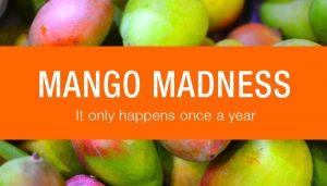 Seawind Foods Dehydrated Mango