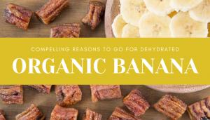 organic dehydrated banana